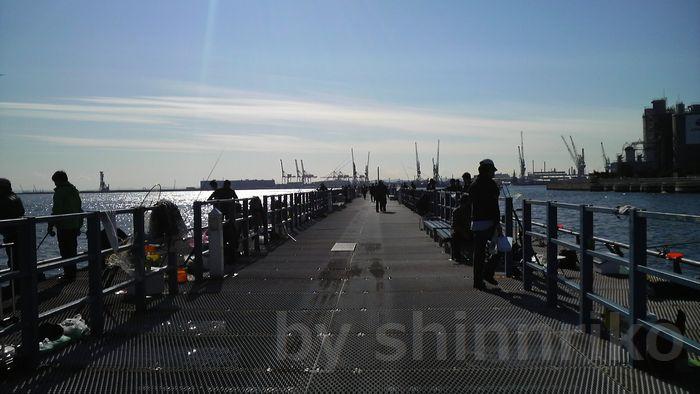 横浜本牧海釣り施設桟橋-2
