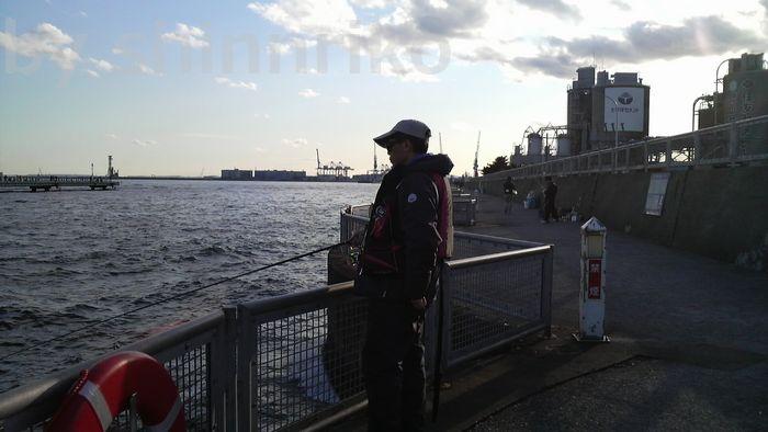 海釣り施設岸壁側