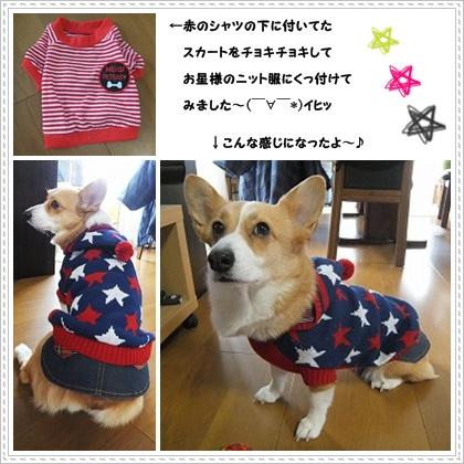 cats1_20120129152003.jpg