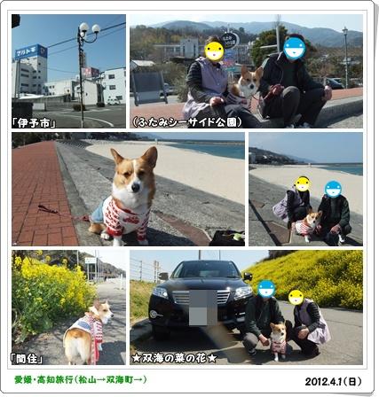 cats1_20120404015158.jpg