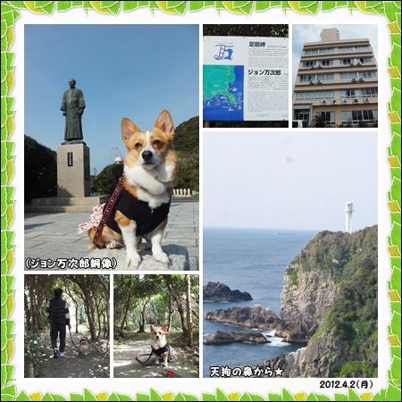 cats_20120405160153.jpg