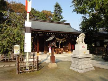 久しぶりに新田神社を撮影してきました。