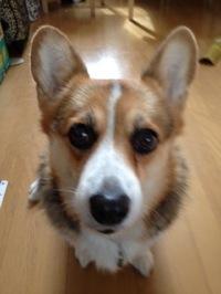 wendy_20111022113153.jpg