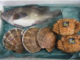 5鮮魚セット12.10