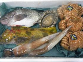 3鮮魚セット12.10