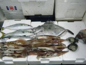 7鮮魚セット12.16
