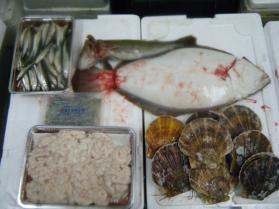 4鮮魚セット12.20
