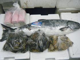 4鮮魚セット12.29