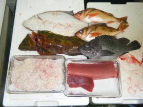 26鮮魚セット12.29