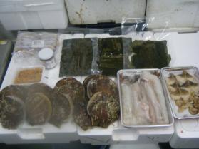 3鮮魚セット12.31