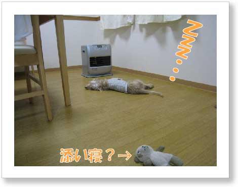 fuku098-1.jpg