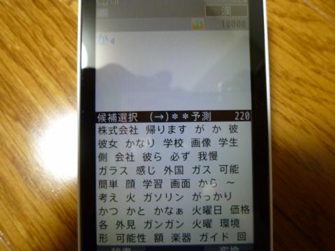 P1000437.jpg