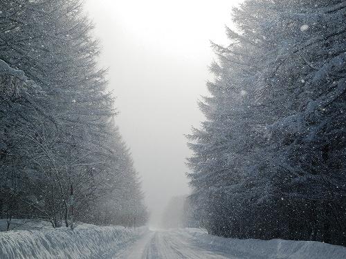 s-雪が。。。