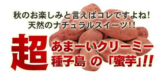 01_20111104192604.jpg