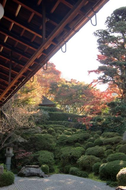 本堂から見た庭