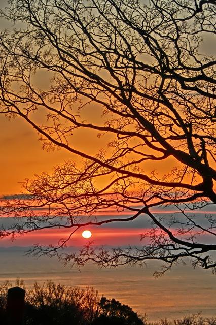 吾妻山公園から見た日の出