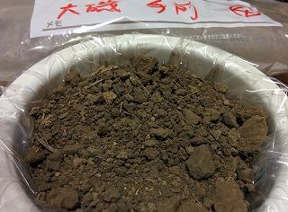 141204 SK様 土壌:大磯手前④Pic