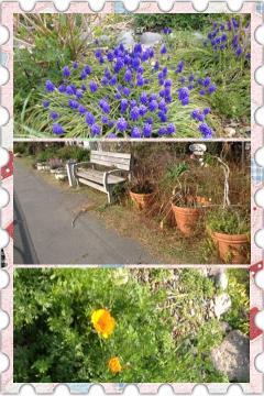 fc2blog_201204051059230e1.jpg