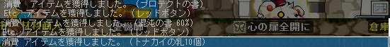 Maple121105_144204.jpg