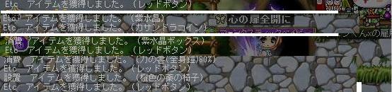 Maple121105_144959.jpg
