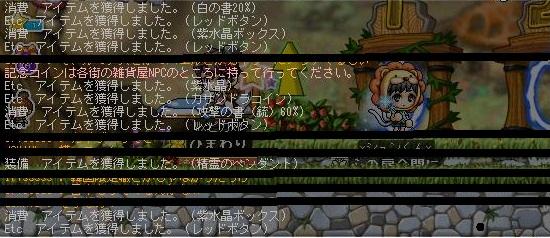 Maple121105_145313.jpg