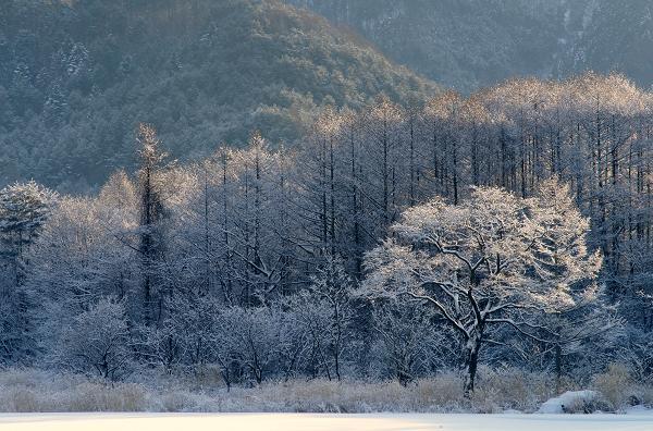 開田・・・冬景