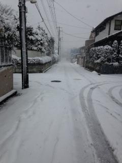 2014.2.14 雪2