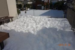 2014.1 雪 翌日