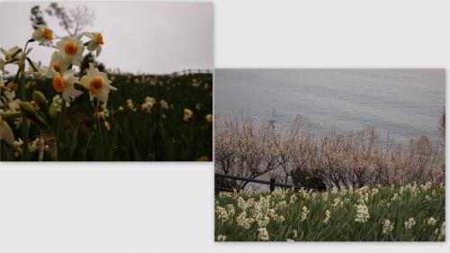2011-02-2310_convert_20111106205253.jpg