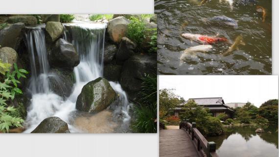 2011-09-098_convert_20110925203408.jpg