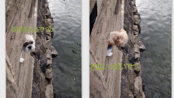 2011-10-2311_convert_20111026025225.jpg