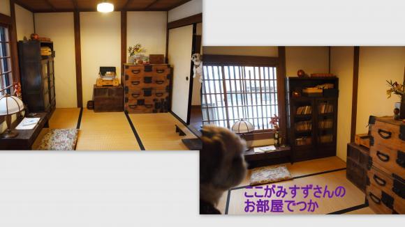 2011-10-233_convert_20111029022143.jpg