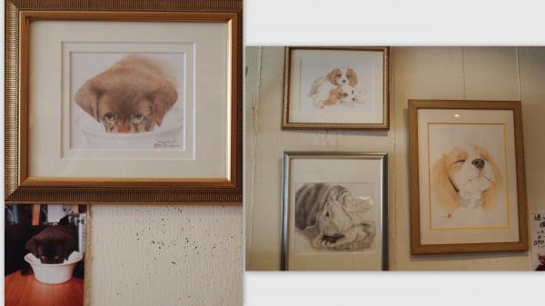 2011-11-27_convert_20111129013716.jpg