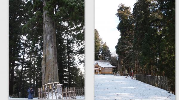 2011-12-103_convert_20111219002739.jpg