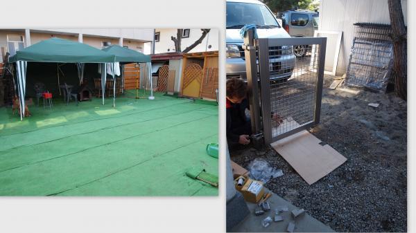 2011-12-111_convert_20111221224710.jpg