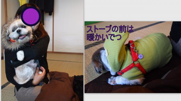 2011-12-112_convert_20111221224820.jpg