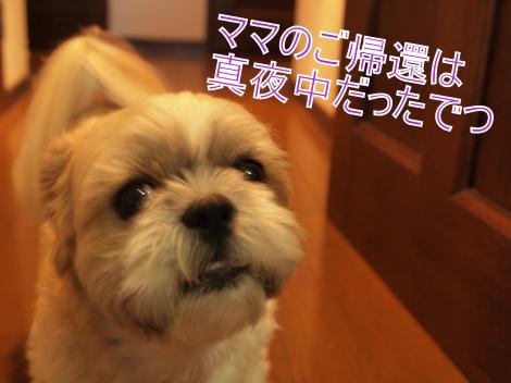 ・搾シ儕9016149_convert_20110907032543