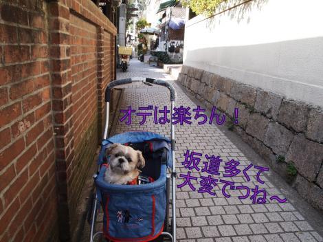 ・搾シ捻2231895_convert_20110917005932