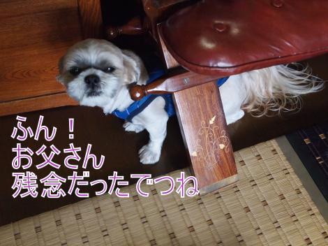 ・搾シ撤9176577_convert_20110921020618