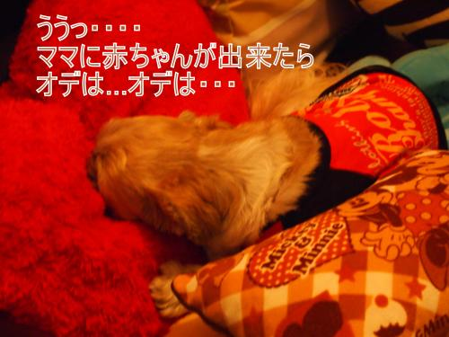 ・搾シ猶A057094_convert_20111012233156