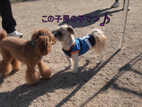 ・搾シ姫9236762_convert_20111014015942