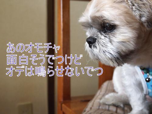 ・搾シ撤A157296_convert_20111015222137