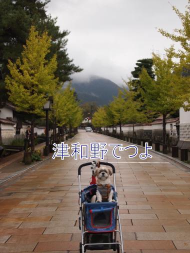 ・搾シ儕A237351_convert_20111025014148