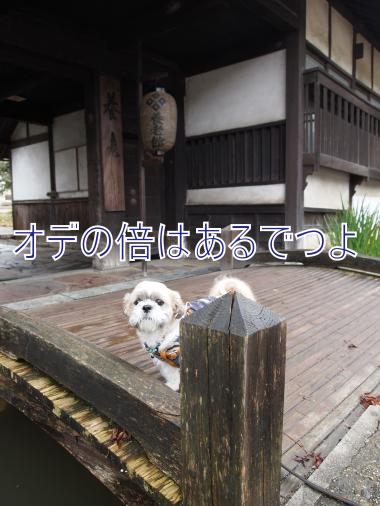 ・搾シ儕A237363_convert_20111025020508