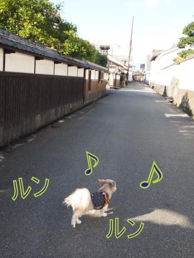 ・搾シ姫A237465_convert_20111026025423