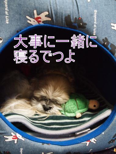 ・搾シ単A297541+(0)_convert_20111030153243