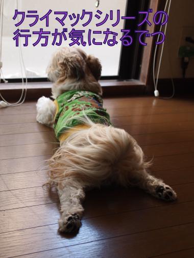 ・搾シ撤B047610_convert_20111105004037