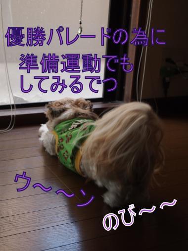 ・搾シ撤B047611_convert_20111105004058