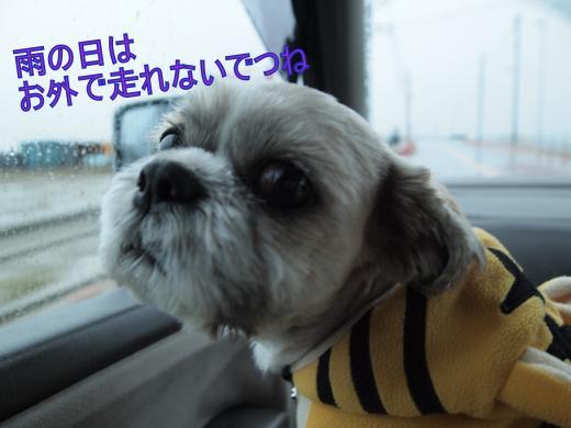 ・搾シ撤B187761_convert_20111119002742
