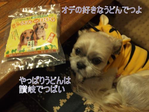・搾シ撤B177746_convert_20111120011939
